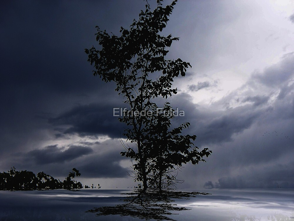 After the Rain ! by Elfriede Fulda