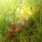 red bubble... by a-c-tree