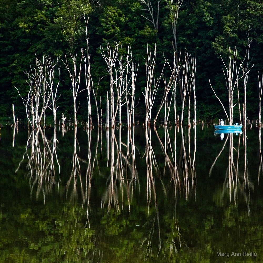 Boat on Lake by Mary Ann Reilly
