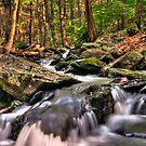 Bushkill Creek by Michael Mill