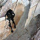 Mr. Asphaltum Rests On A Rock by CarolM