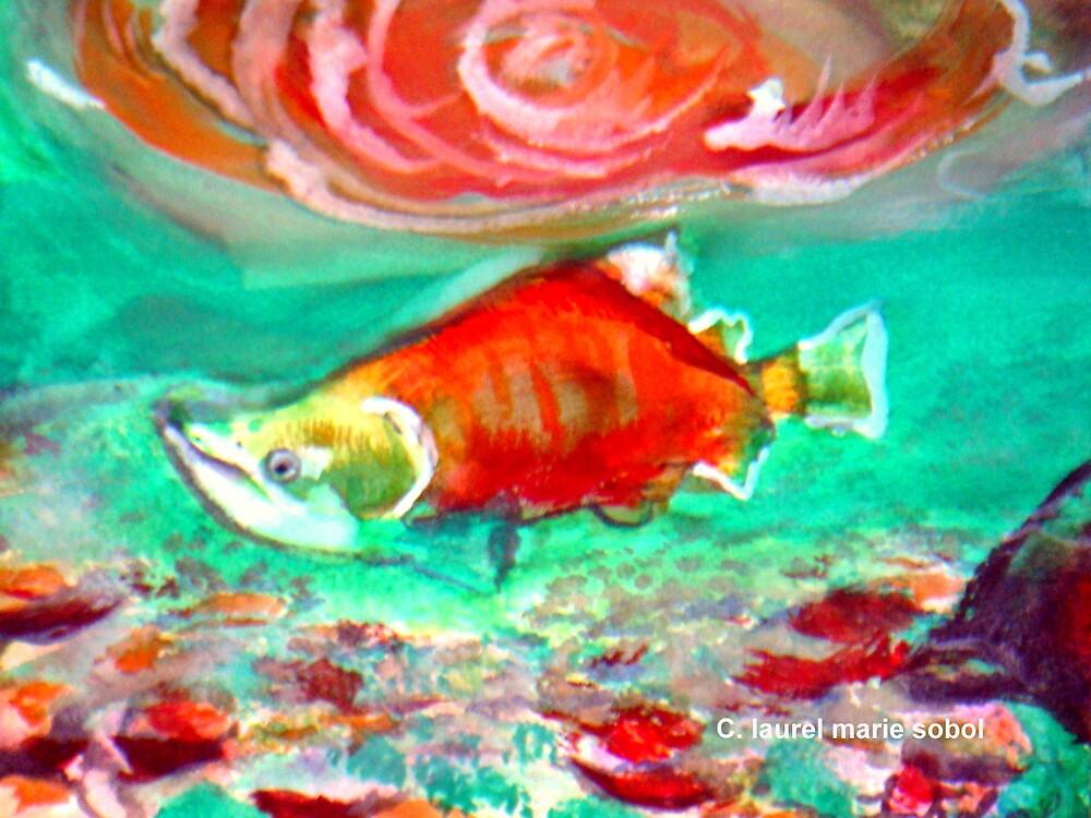 Sockeye Salmon with Eggs in Stream  by Laurel Sobol