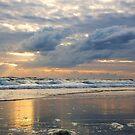 sun rays in Daytona by dc witmer