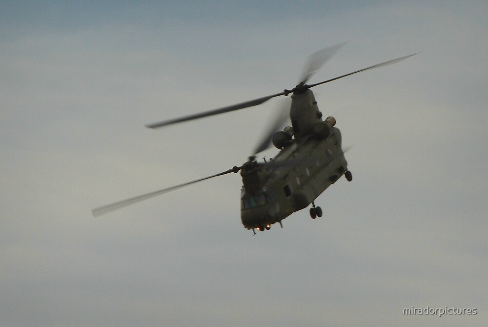 The work horse of military helicopters by miradorpictures