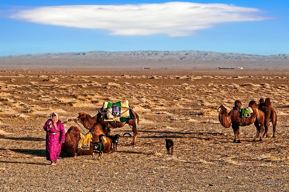 Gobi Crossing. by bulljup
