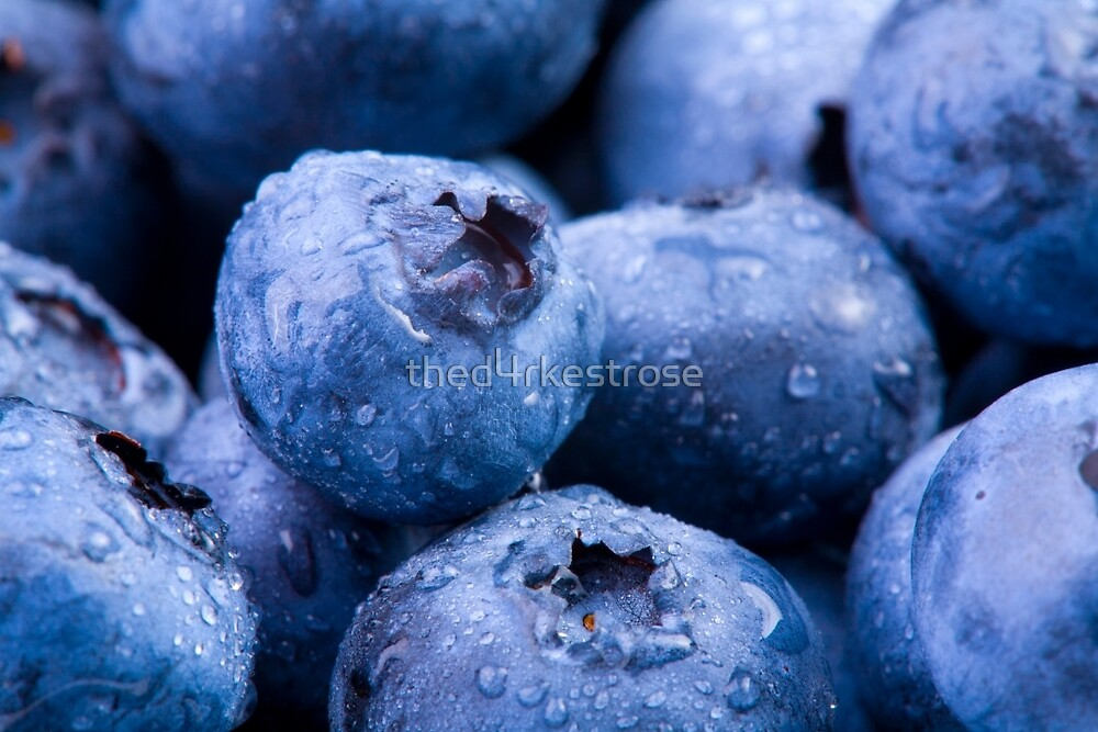 Beautiful Blueberries by thed4rkestrose