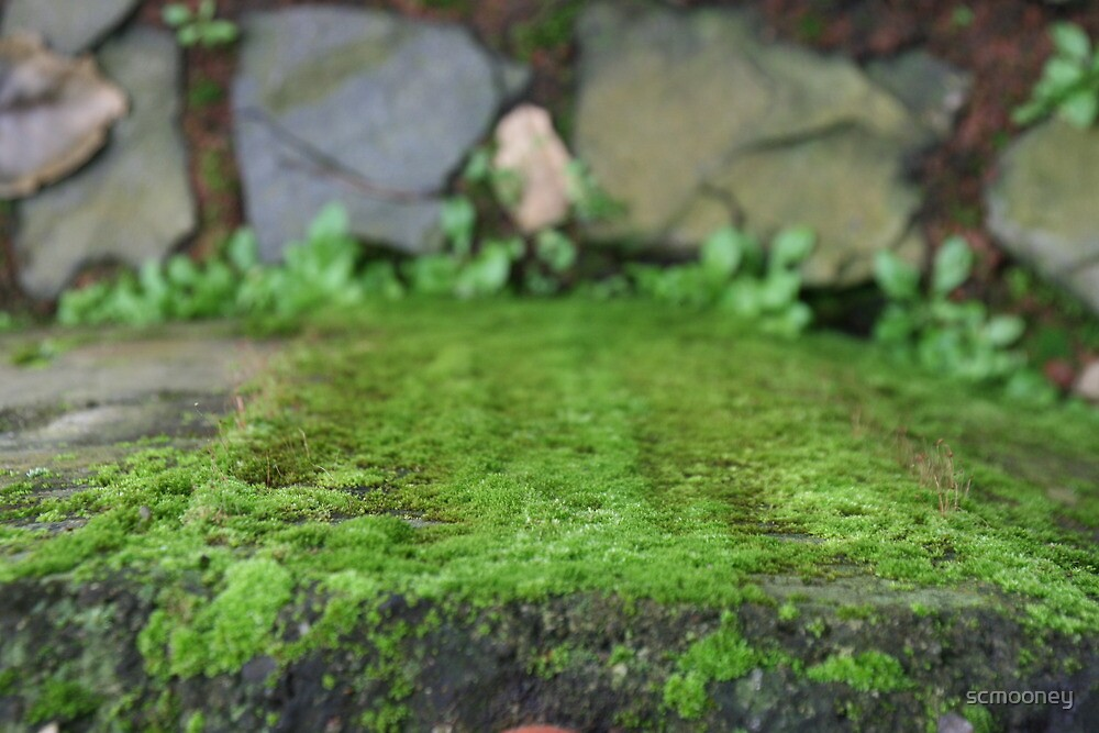 Emerald Brick by scmooney