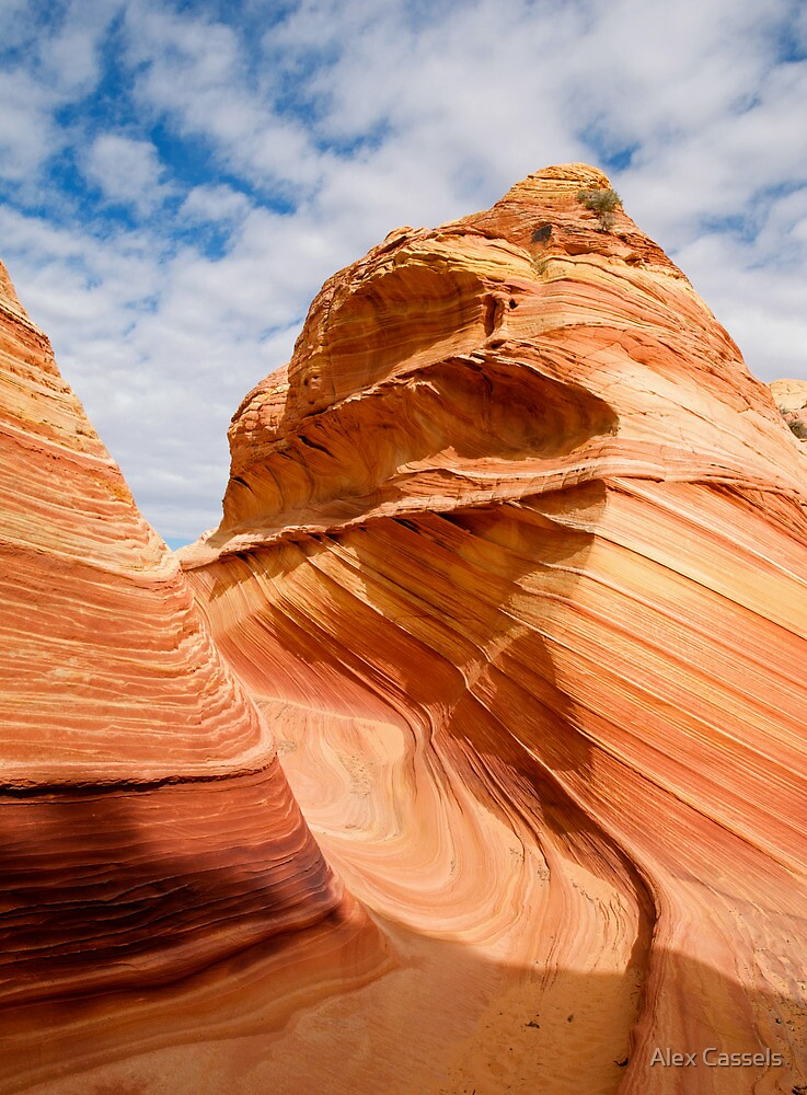 Sandstone Swirl in the Coyote Buttes by Alex Cassels