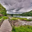 Rydal Water Walk by John Hare