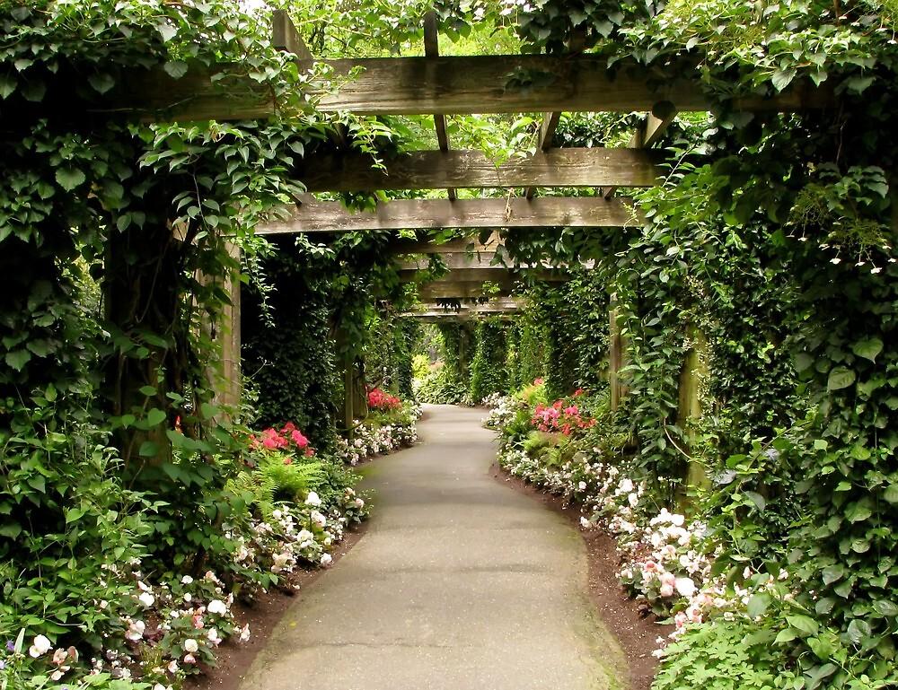 Minter Gardens 3 by Tracy Friesen