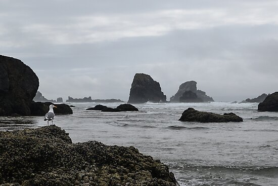 Indian Beach, Ecola State Park, Oregon by Mike Kunes
