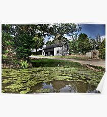 Barn by the pond Poster