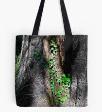 Tilden Park, Berkeley California Tote Bag