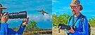 Hazards of Bird Photography by Yukondick