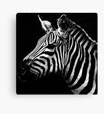 Stripes Canvas Print