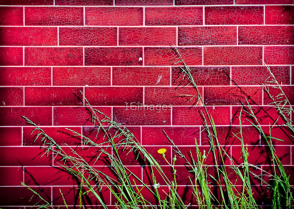 Wentworth Street Wall by 16images