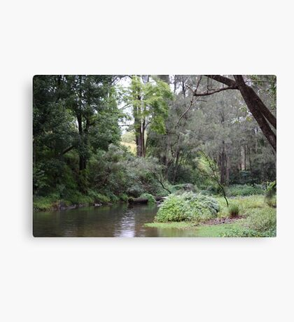 Tallebudgera Creek During a Winter Sprinkle Canvas Print