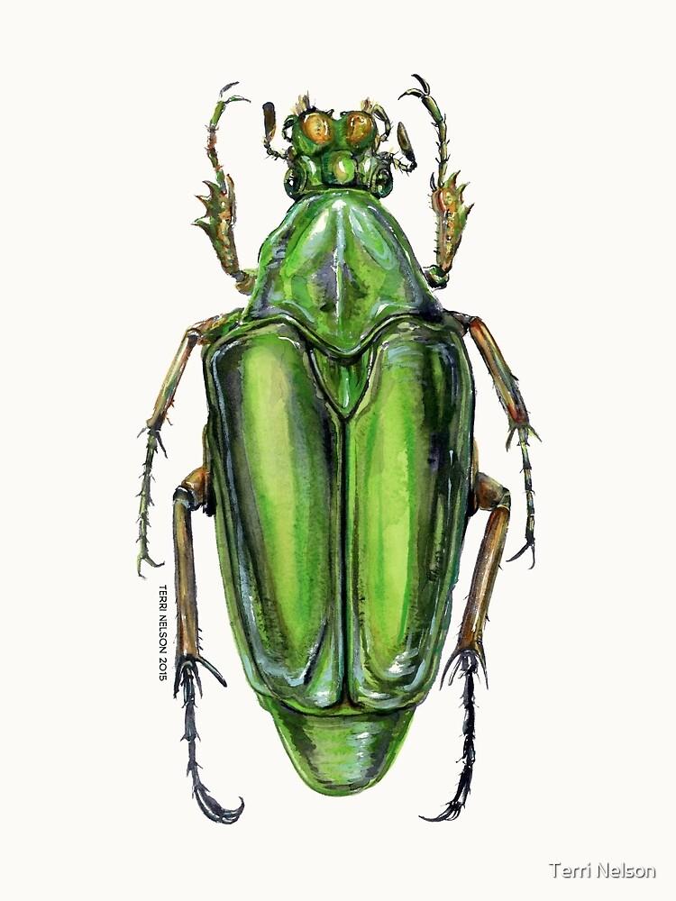Scarab Beetle by Terri Nelson