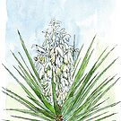 Yucca - Botanical by Maree Clarkson