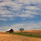 Palouse barn and tree by Steve Biederman
