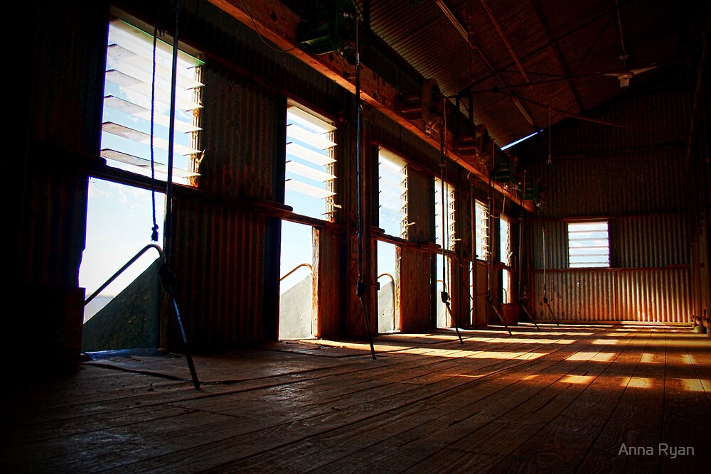 Shearing Shed!  by Anna Ryan