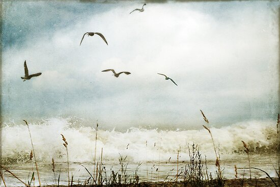 Love of the Sea I by Sybille Sterk