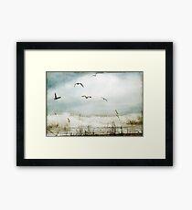Love of the Sea I Framed Print