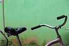Ortega transportation by scmooney