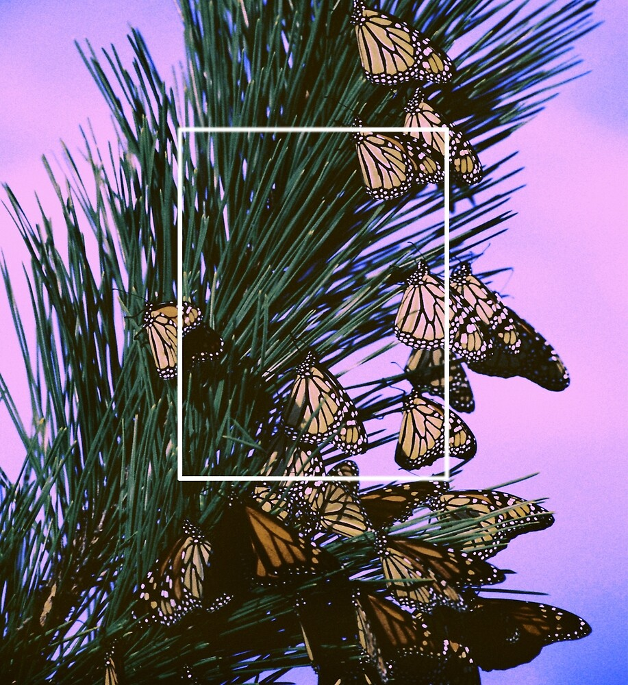 Butterflies by PosthumanINC