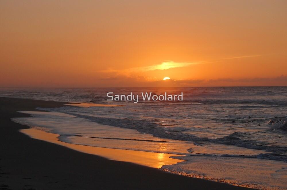 Celebrate A New Day by Sandy Woolard