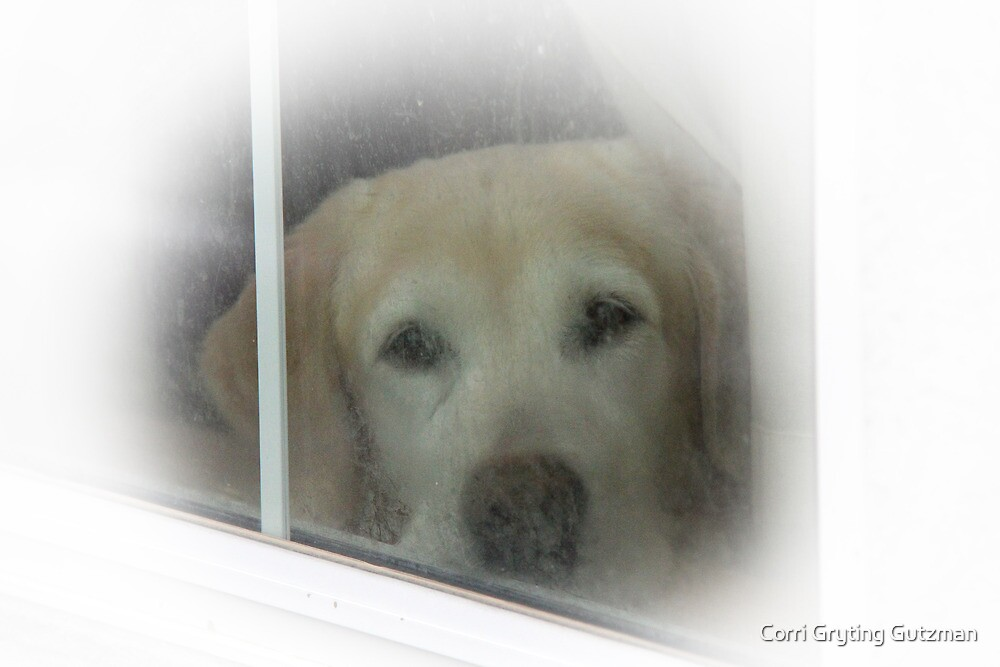 Through the Frosty Window (Version 2) by Corri Gryting Gutzman