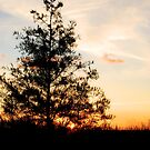 sunset by CriGa Photography