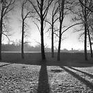 Frozen Field by Nick  Gill