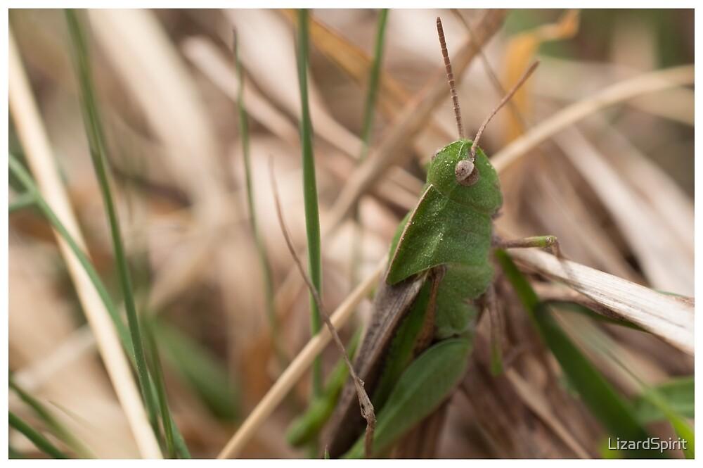 Green Little Hopper by LizardSpirit