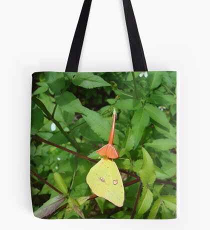 Cloudless Sulphur butterfly in Mahogany Vine Tote Bag