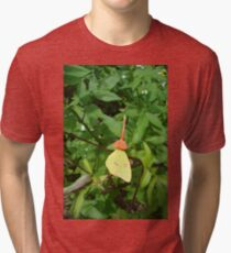 Cloudless Sulphur butterfly in Mahogany Vine Tri-blend T-Shirt