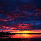 wild winter sunrise. inverloch, australia by tim buckley | bodhiimages