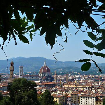 Duomo - Florence by adamredshaw