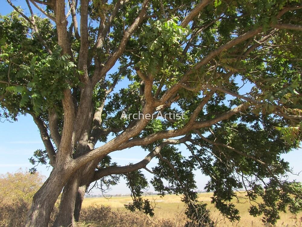 Tree by ArcherArtist
