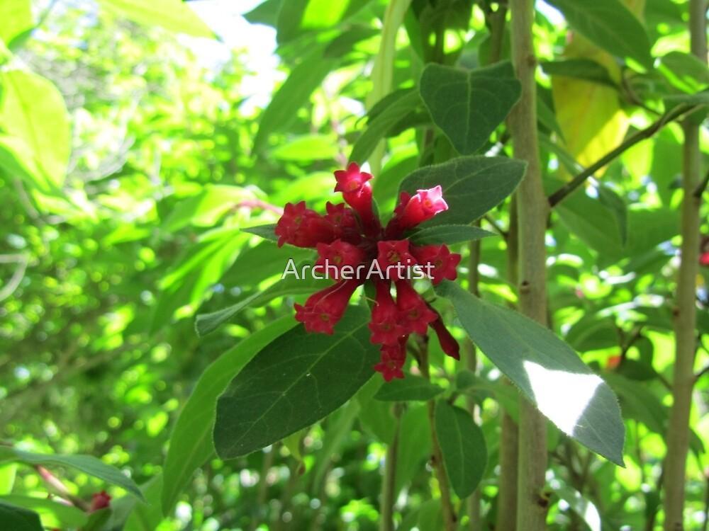 Red Plant by ArcherArtist
