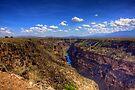 Rio Grande Gorge Bridge by Bill Wetmore