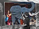 Peek from behind the elephant ear by awefaul