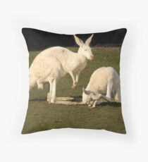 White Kangaroos Throw Pillow