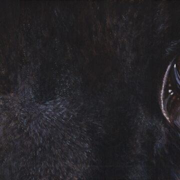 Black Panther Eyes by artbyakiko