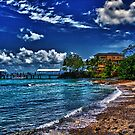 Fake Paradise  by Beau Williams