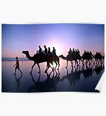 Camels in the Sunset Poster