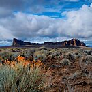 The Beauty Of Fort Rock ~ Central Oregon ~ by Charles & Patricia   Harkins ~ Picture Oregon