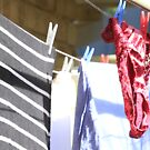 Red Knickers by Kym Howard