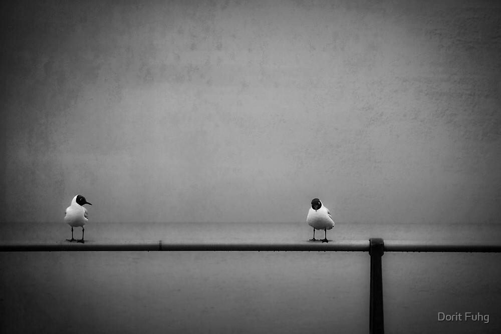 so... now that I got you alone, how about... by Dorit Fuhg