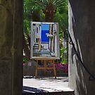 Framed by Steve plowman